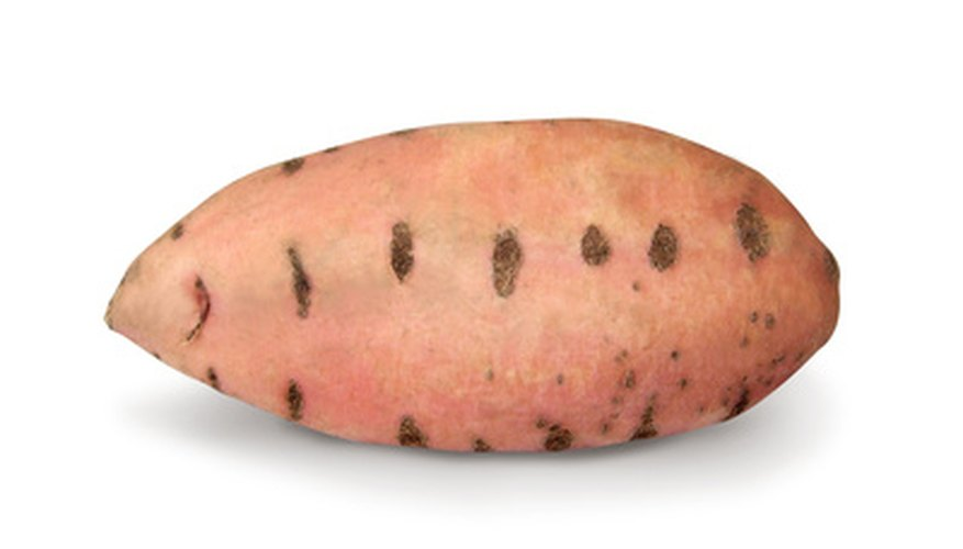 Grow yams in your backyard to harvest a bounty of the plant's sweet roots.