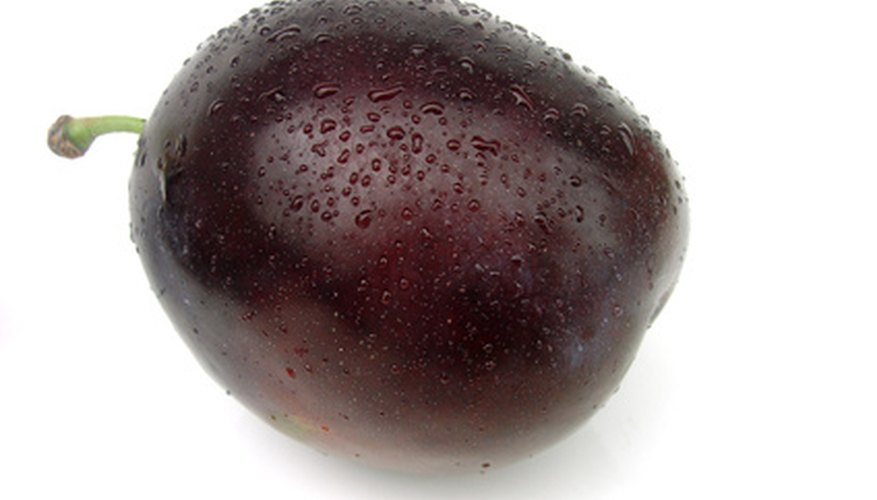 Plum fruits have a stony pit in their center.