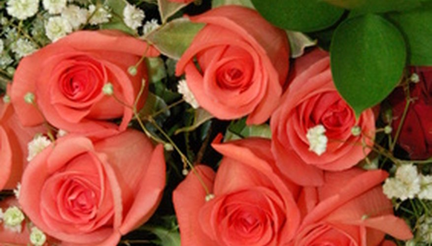 Maintain your rose bouquet longer.