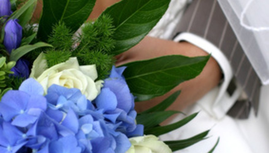 Blue hydrangeas are a favorite flower of brides.