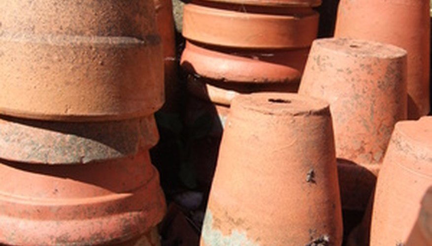 Terracotta, or clay, pots are the classic gardening containers.