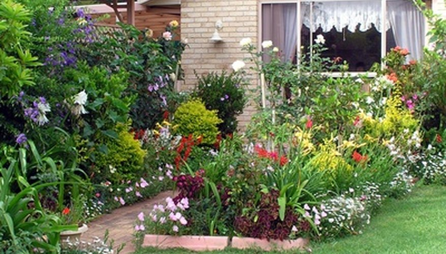 Use several species of flowering perennials in the border for constant color.