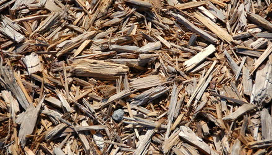 Shredded bark chips are an inexpensive organic mulch.