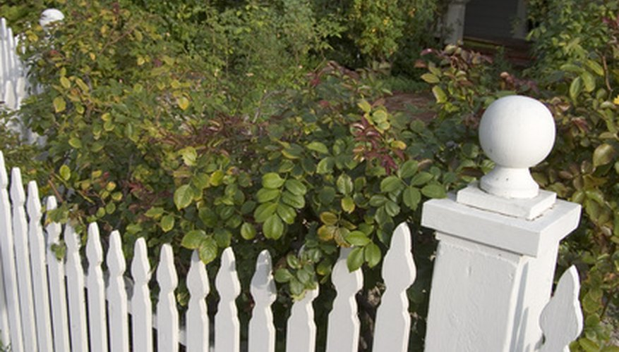 Most vinyl corner fencing comes in picket fence style.