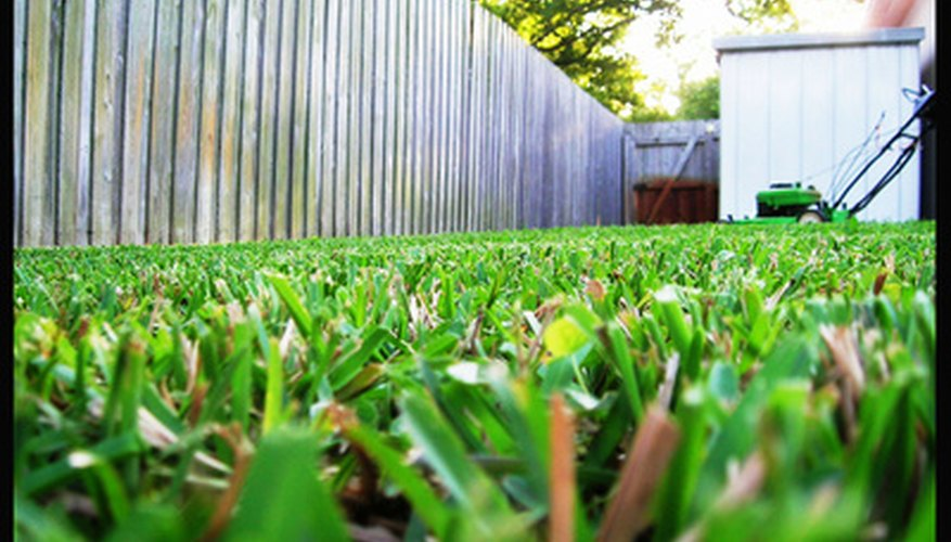 Mowing with mulching blades helps promote a healthy lawn.