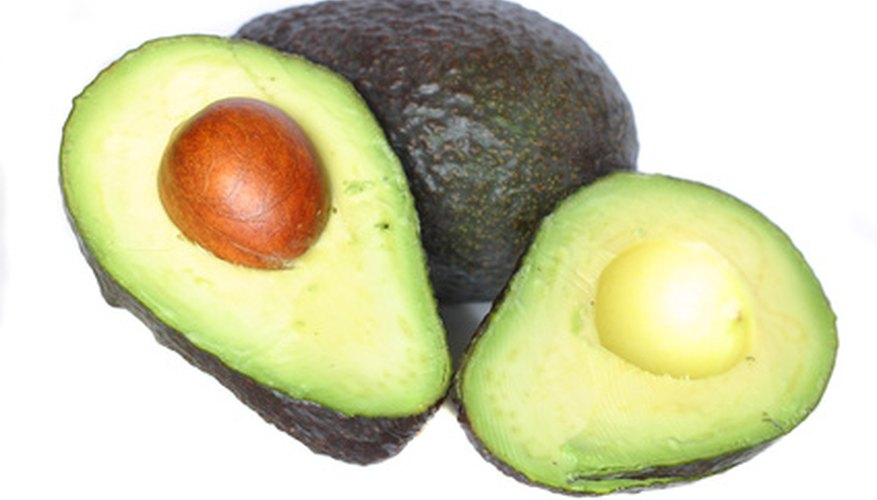 Avocado fruits.
