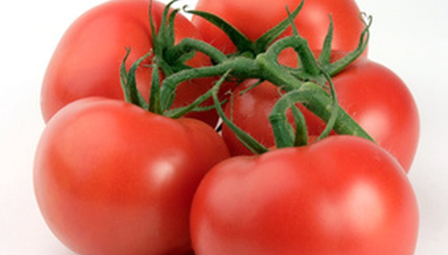 Tomatoes can be grown from seed indoors and transplanted outside or from seedlings after frost.