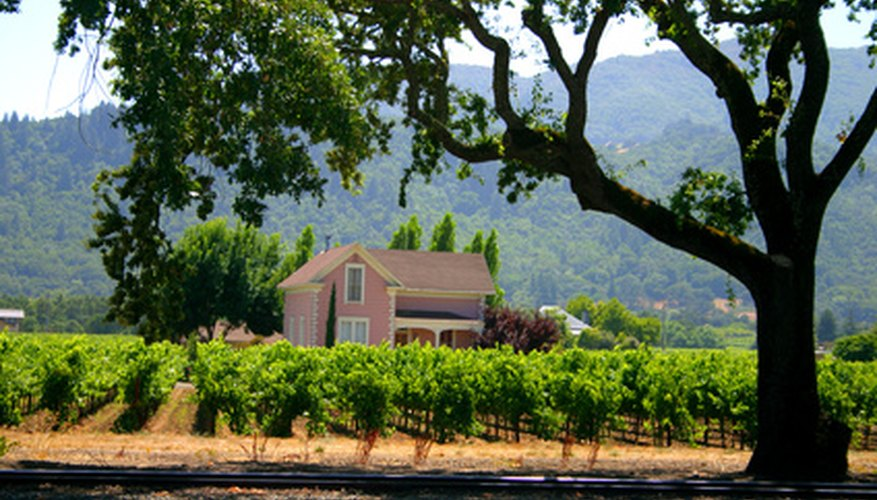 Napa Valley draws visitors to its numerous vineyards and wineries.