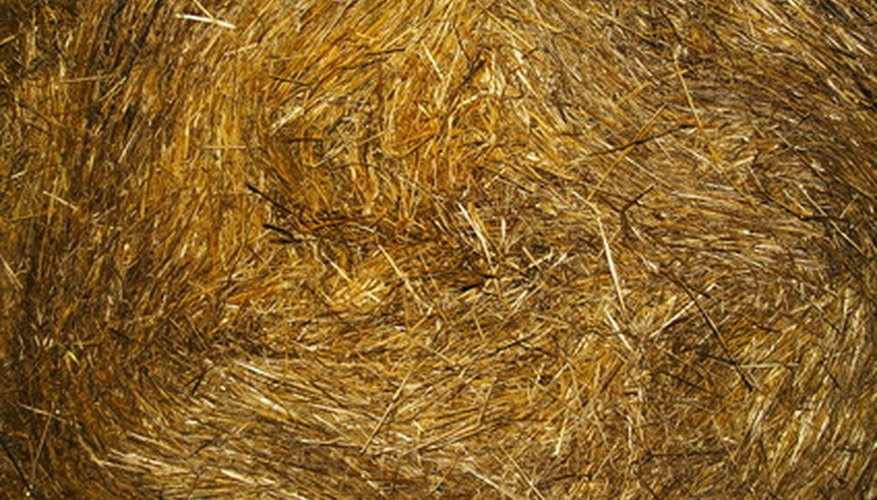 Straw makes a thick and inexpensive mulch.
