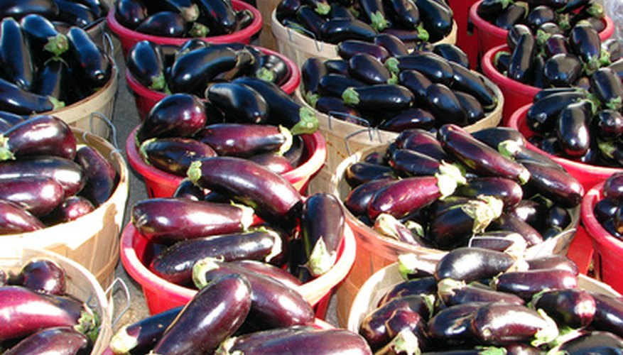There is a variety of eggplant cultivars.