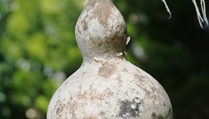 Dry your gourds for birdhouses and other crafts.