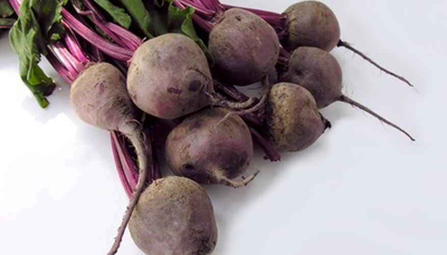 Freshly harvested beets with the stalks and leaves still on.