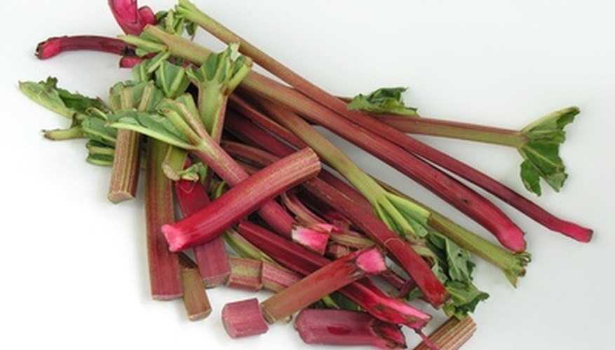 Caring for rhubarb plants makes it easy to have a ready supply for culinary pursuits.