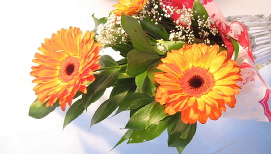 A well-preserved  bouquet of cut-flowers in a vase.