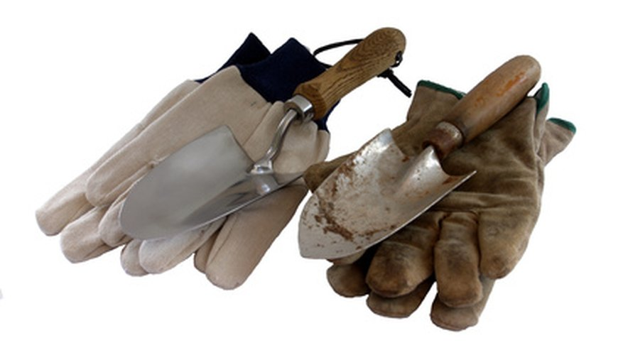 Use a trowel to loosen the soil for your soil test kit.