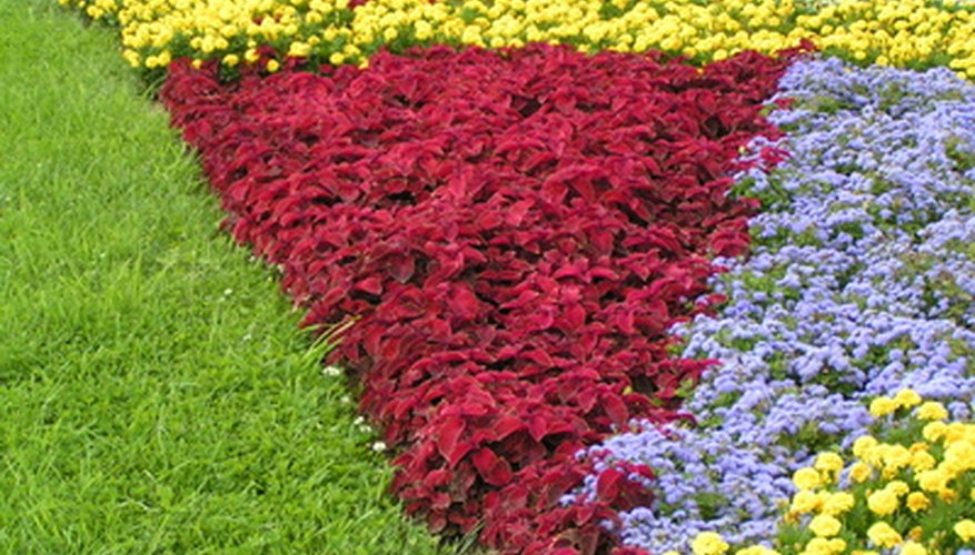 Flower beds can be protected with natural products.