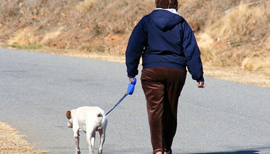 Crea tu propio bolso para llevar los artículos necesarios para pasear a tu perro.