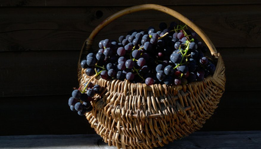 Commercial grapevine baskets can create a second market for farming products.