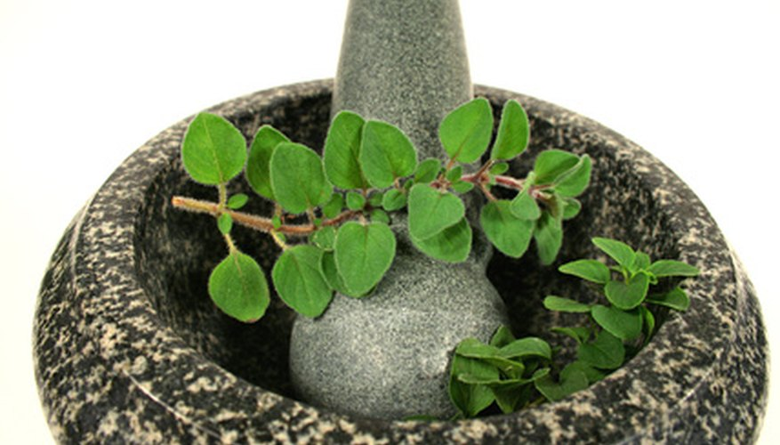 VooDoo practitioners grow oregano as a protective herb.