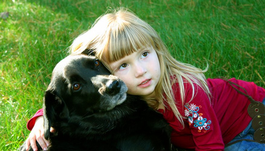 Hold your dog to encourage feelings of safety.