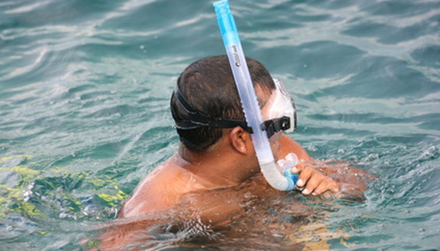 Cómo utilizar un snorkel