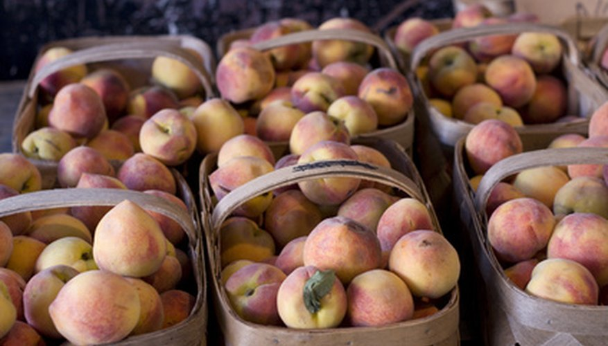 Georgia's peach season runs from mid-May to mid-August.