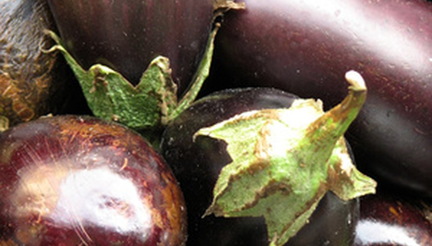 Eggplant is a spring crop in Fresno.