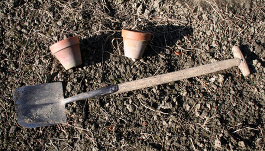 Garden dirt and tools