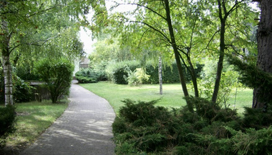 Pathways help to connect areas of the park landscape.