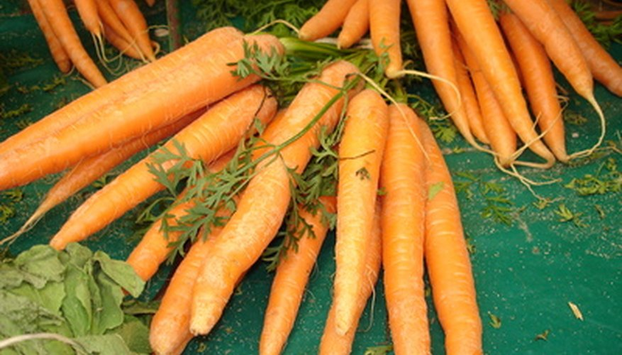 Carrots can be grown in winter gardens.