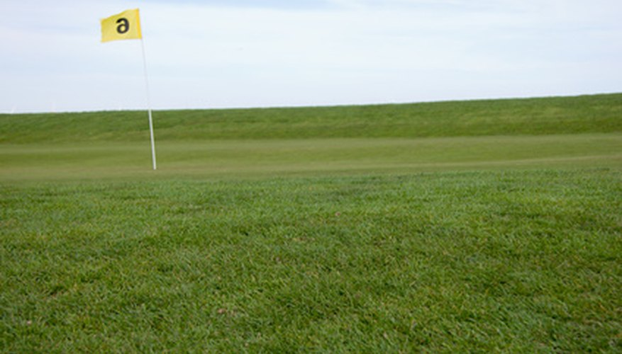 The type of grass on a green affects the speed and spin of the ball.