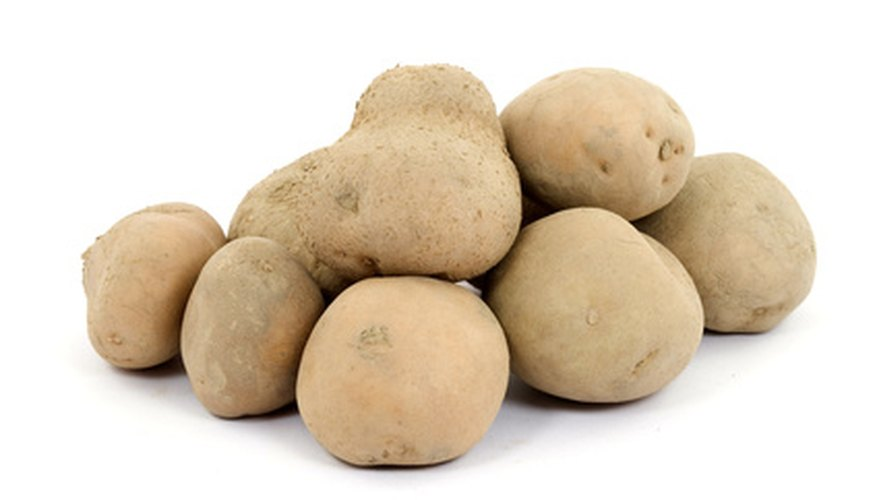 Soaking a potato before planting can help ensure a healthy plant.