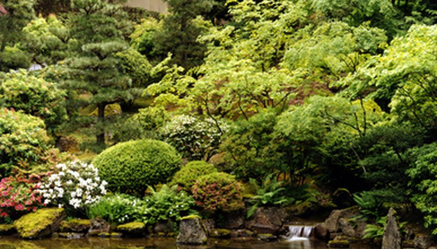 A tea garden uses a variety of shrubs.