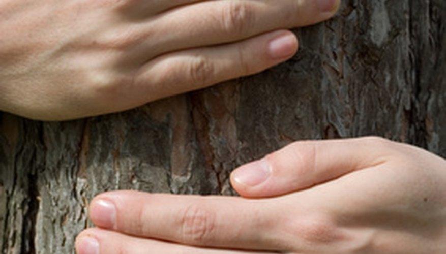 La identificación de los recursos naturales puede ayudar a los niños a aprender cómo protegerlos.