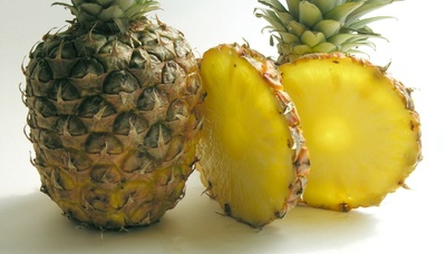 Fertilize pineapple plants to ensure a healthy harvest.