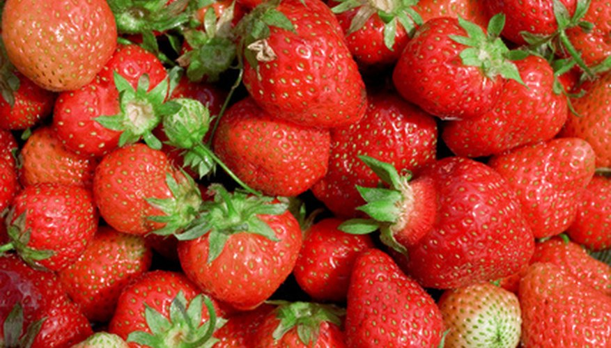 A bounty of juicy strawberries can be grown in your Albertan backyard.
