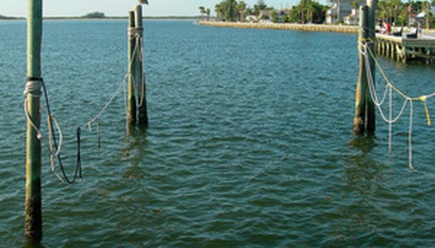 Estar en Tampa Bay puede ser gratificante cuando conoces un par de buenos lugares.