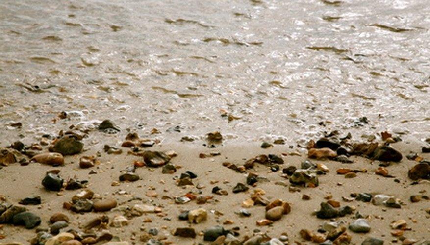 Las mareas altas arrastran rocas, caracolas y otros restos sobre la costa.
