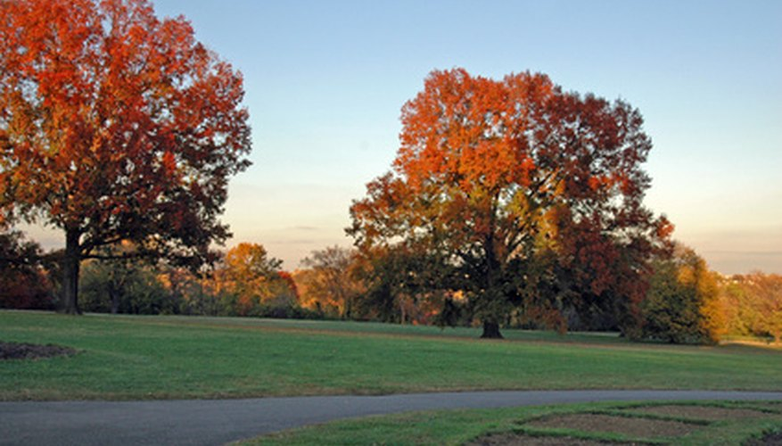 Virginia in the late fall is a great time to book an affordable romantic getaway.