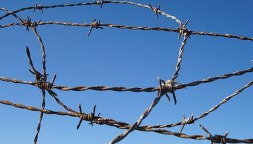 Encontrar a un preso en Raleigh, Carolina del Norte, puede ser fácil si tienes alguna información básica.