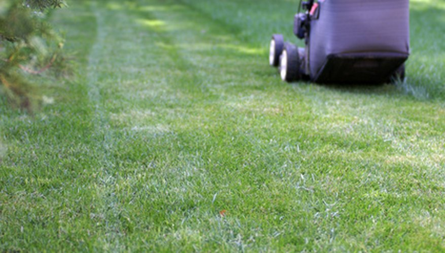 Keep your lawn mower blades sharp for a smooth mow.