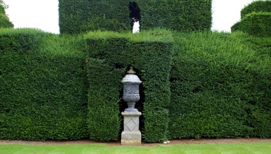 The formal hedge