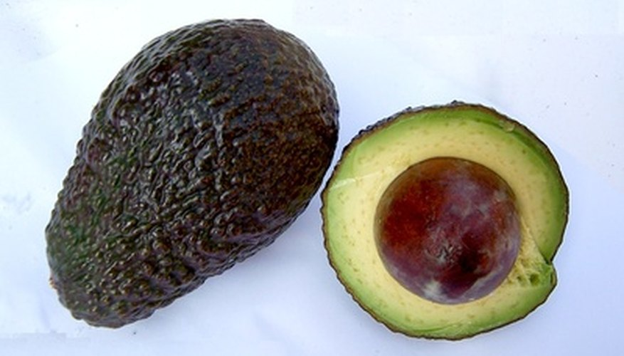 A ripe Hass avocado has dark green, almost black skin.