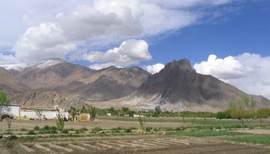 Low oxygen on the mountains of Tibet make farming a challenge.