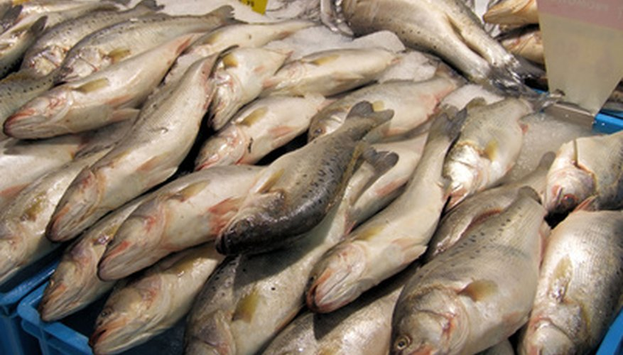 Fish farming allows for fresh fish to eat and sell.