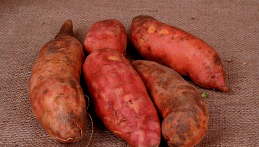 Healthy yams are a bright orange color and solid.