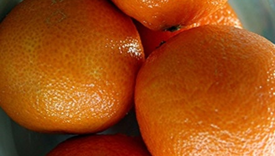Oranges get sweeter on the tree after exposure to winter coolness.