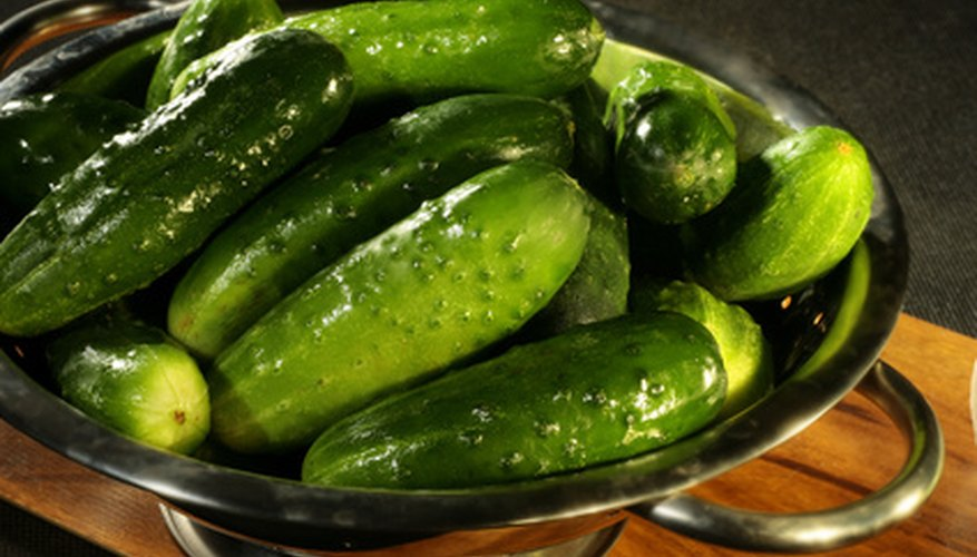 Grow fresh cucumbers for cool salad additions.