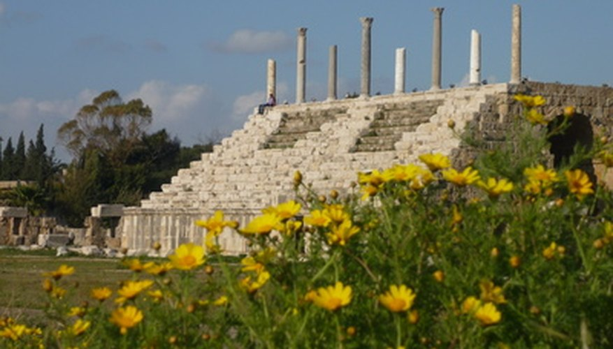 Southern Lebanon's Tyre Hippodrome decorated with wild flowers.