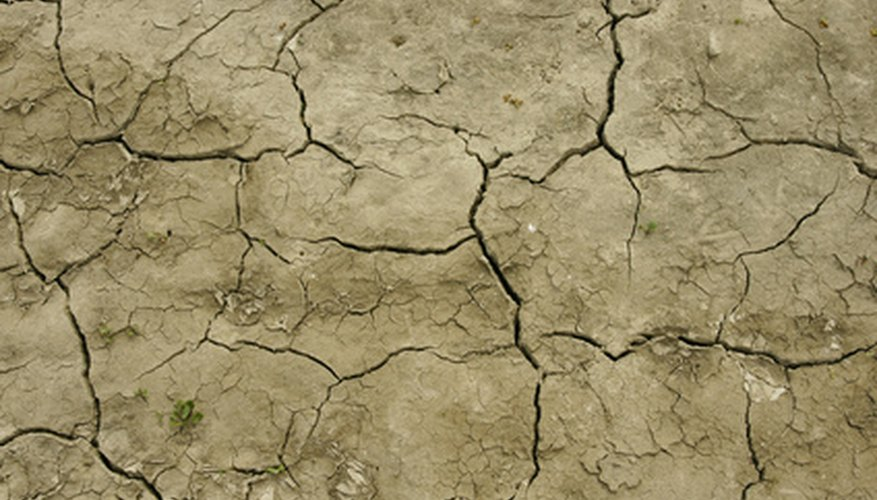 Periods of drought can wreak havoc on your lawn and garden.